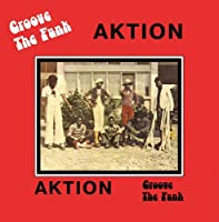 Groove the Funk [12 inch Analog]