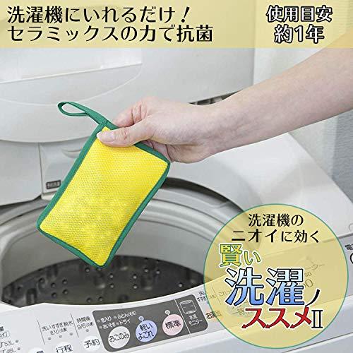 コモライフ『賢い洗濯ノススメII洗濯槽クリーナー』