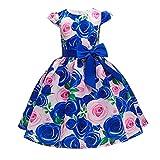 toddler floral dress toddler girl summer clothes 2 year old girl clothes 3 years girls dresses toddler girl fall dresses floral dress fall toddler dress fall dresses for toddler girl (LK4 Blue,3)