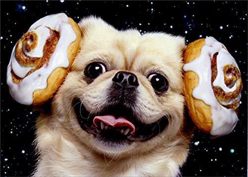Avanti Dog Cinnamon Buns Funny/Humorous Birthday Card