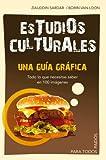 Estudios culturales: Una guía gráfica. Todo lo que necesitas saber en 100 imagénes. (Para Todos)
