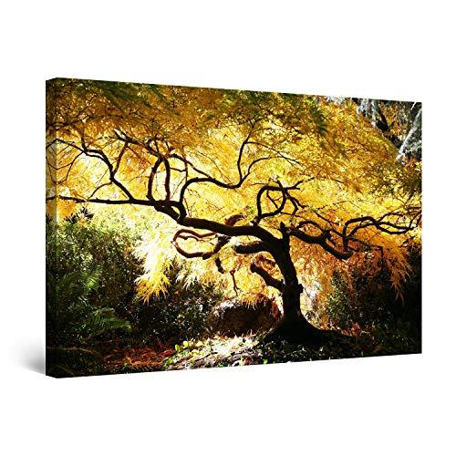 Startonight Bilder Kanadischer Ahorn, Leinwandbilder Moderne Kunst, Natur Wanddeko Kunstdrucke, Wandbilder XXL 80 x 120 cm, Tag Nacht Bild