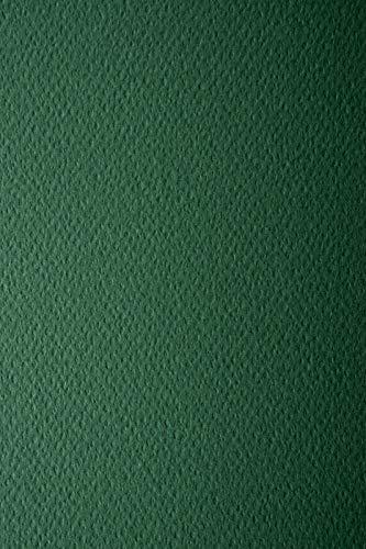10 Blatt Tannen-Grün 220g Tonkarton einseitig strukturiert DIN A4 210x297 mm Prisma Pino Bastelkarton bunt mit Prägung Karton bunt geprägt Struktur-Karton A4 Foto-Karton strukturiert