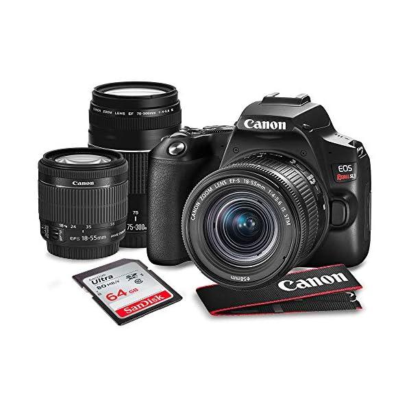 RetinaPix Canon EOS Rebel SL3 DSLR Black Digital Camera with EF 75-300mm f/4-5.6 III Lens