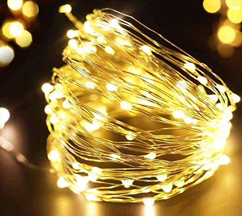 FRIDEKO 30 LED 3M/10FT Micro Silver Wire Battery Operated LED Fairy String Lights Indoor for Bedroom Wedding Party Birthday Christamas Decor (Warm White)…