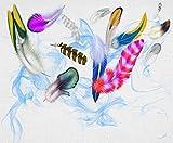 5D Diamond Painting Taladro Redondo Completo Diy Cinta De Plumas De Color Creativo Imagen De Mosaico Diamantes De Imitación Bordado Punto De Cruz Decoración De La Habitación Del Hogar Regalo Kit I
