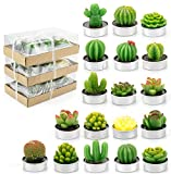 Lawei 18 Pack Cactus Tealight Candles - Handmade Delicate Succulent Mini Plants Candles - Perfect for Home Decor Candles Festival Wedding Props and House-Warming Party
