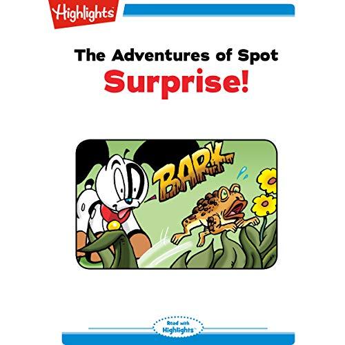 The Adventures of Spot: Surprise copertina