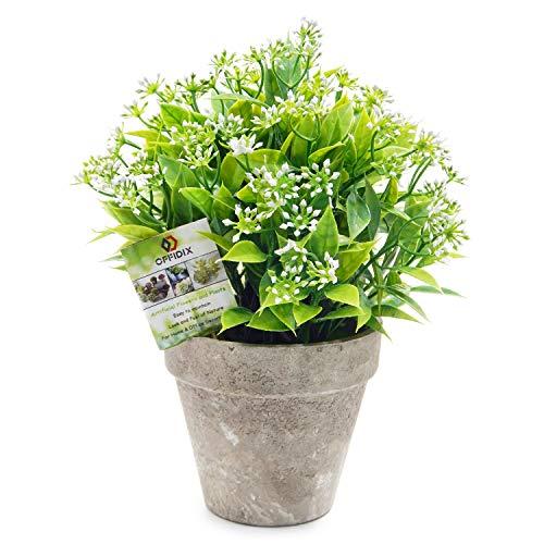 OFFIDIX Künstliche Kunststoff-Pflanzen mit Töpfen, Mini-Topfpflanze, Kunstblumen, künstliche Pflanzen in Töpfen für Heimdekoration im Innenbereich, Topfpflanzen für Bücherregal D-grüne Pflanze