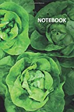 Notebook: Lettuce photography Petite Composition Book Daily Journal Notepad Diary Student for researching self sufficient living on 5 acres