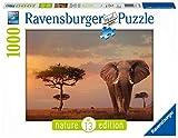 Ravensburger Puzzle, Puzzle 1000 Piezas, Elefante de los Masai Mara, Nature Edition, Puzzles para Adultos, Puzzle Animales, Rompecabezas Ravensburger de Alta Calidad