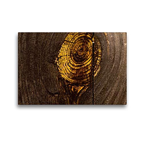CALVENDO Premium Textil-Leinwand 45 x 30 cm Quer-Format Lack ab! Details von altem Holz und abblätternder Farbe, Leinwanddruck von H.T.Manfred Zimmermann