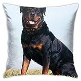 lkjhg478 Negro Perro Rottweiler Almohada Decorativa para el hogar Ropa de Cama Sofá Sofá de 18 x 18 Pulgadas / 45 x 45 cm