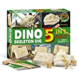 PowerKing Kit de excavación, 5 en 1 Dinosaur Skeleton Dig Excavation Kit para niños Ciencia Educación-Excavación de fósiles Excavación Juguetes para niños Regalos