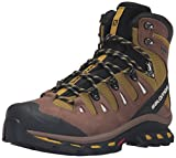 Salomon Men's Quest 4D 2 GTX Backpacking Boot, Detroit/Black/Navajo, 11 M US