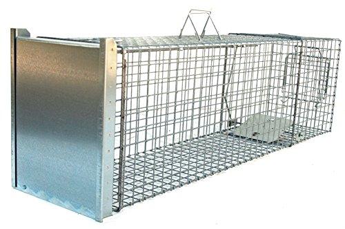 Holtaz Super Fort Cage Piège De Capture pour: Martres, Chats, Chiens, Loutres, Castors, Renards, Ratons Laveurs, Dimensions: 140x34x42 cm, avec Appât pour Piégeage