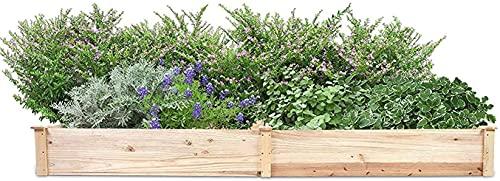 Storage jar Mesa De Cultivo Huerto Urbano 243,5 x 61,5 x 27 cm Cama de jardín elevada Jardinera Rectangular para Exteriores Jardinera Rectangular de Madera Cama de jardín para Verduras y Flores