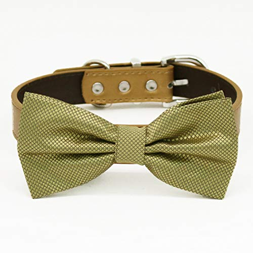 Pale gold bow tie Bargain collar adjustable to XS XXL 25% OFF Pup and