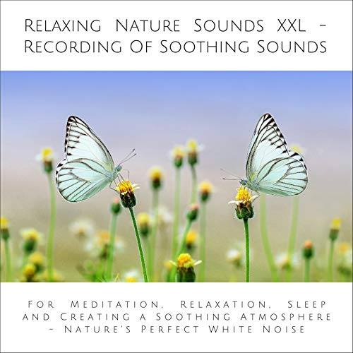 Relaxing Nature Sounds XXL (without music) - Recording Of Soothing Nature Sounds  By  cover art
