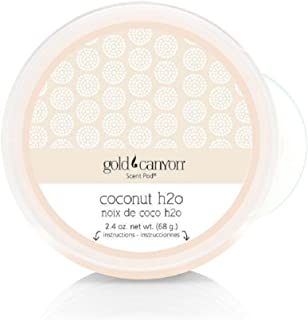 Gold Canyon Candles Scent Pod Wickless Candle (Coconut H20 - Coconut Water) ~ Notes of White Tiare Flower, Rose & Coconut Sugarcane