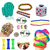 Mseiya Fidget Toys Set Sensory Relieves Stress Fidget Toys for Teenagers Anxiety Toys and Adults Autism Toys