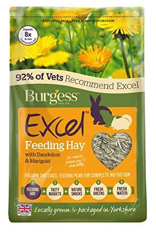 Burgess Excel Feeding Heno con diente de león y caléndula, 1 kg