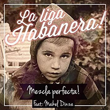 Mezcla Perfecta (feat. Maikel Dinza)