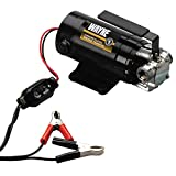 WAYNE PC1 Portable 12V Battery-Powered Water Transfer Pump With Suction Hose And Attachment