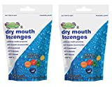 Cotton Mouth Dry Mouth Lozenges Fruit Mix Bag 2 Pack