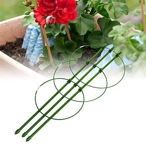 YOGANHJAT Gabbia Supporto Piante Anello Garden Trellis Flower Supporto Arrampicata con 3...