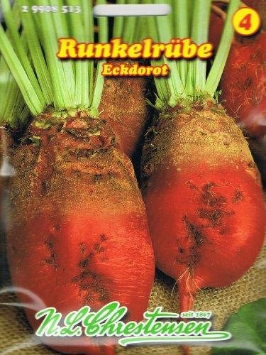 Runkelrübe Eckdorot Futterrübe Typ Rote Walze Rübe ca. 600 Korn
