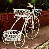 Stockage de vase de panier de fleur de vélo de tricycle mignon, support de jardinière de tricycle orné de métal de 3 rangées, support d'ornement de patio de vélo de jardin, décoration de mariage