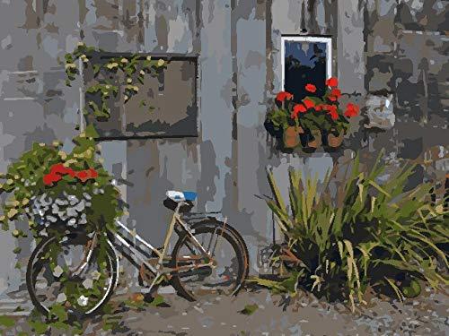 Adesiviamo 5D DIY pintura diamante kit Bicicleta flor roja - taladro completo de punto de cruz de para adultos rhinestone bordado arte para decoración de la pared del hogar 30x40cm