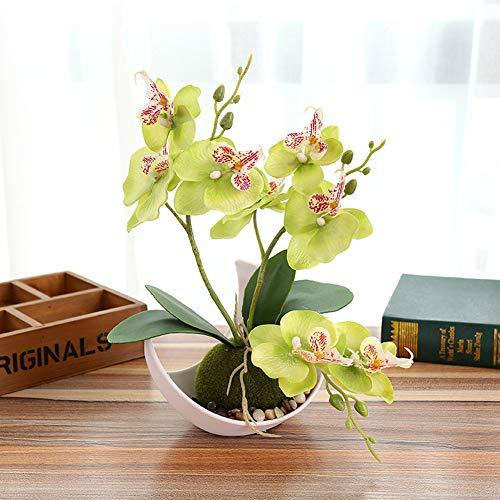 Sanqing Artificial orquídea Bonsai Falso Flores con florero en Maceta Planta de Simulación Phalaenopsis Home Decor Interior Exterior Oficina Artificial Planta (1 Paquete),Green