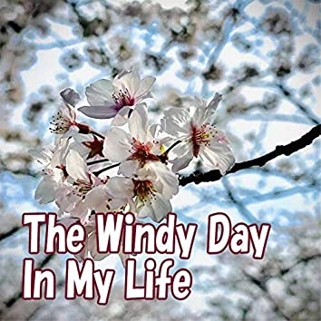 The Windy Day In My Life