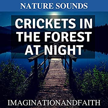 Nature Sounds - Crickets in the Forest at night  60 Minuets