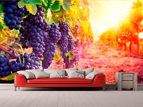 Fotomural Vinilo para Pared Viña   Fotomural para Paredes   Mural   Vinilo Decorativo   Varias Medidas 600 x 300 cm   Decoración comedores, Salones, Habitaciones.