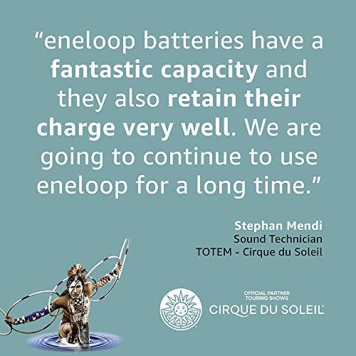 Panasonic eneloop, Ready-to-Use Ni-MH Akku, AA Mignon, 8er Pack, Storage Case, min. 1900 mAh, 2100 Ladezyklen, starke Leistung, wiederaufladbare Akku Batterie