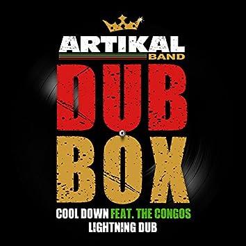 Artikal Band Dub Box