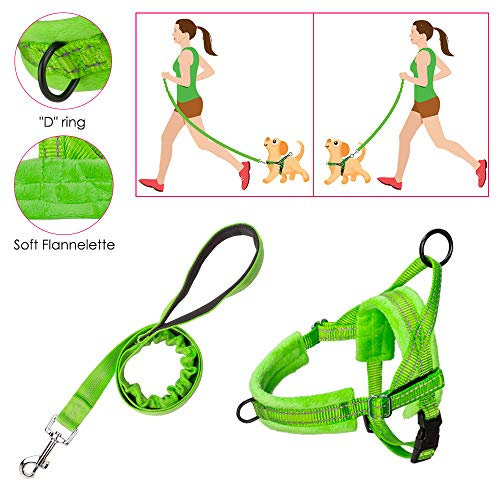 SlowTon No Pull Small Dog Harness and Leash, Front Lead Walk Vest Harness Soft Padded Reflective Adjustable Puppy Harness Anti-Twist 4FT Pet Lead Quick Fit for Small Dog Cat Animal (S, Light Green)