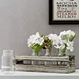 MyGift Rustic Torched Wood Crate Style Planter Box with 4 Clear Glass Vintage Mason Jars for Indoor Plants, Flowers and Herbs