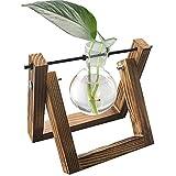 FUBAO Jarrones de cristal con soporte de madera, plantas pequeñas, terrario, para plantas hidropónicas, maceta de vidrio de escritorio para decoración del hogar (1 botella)
