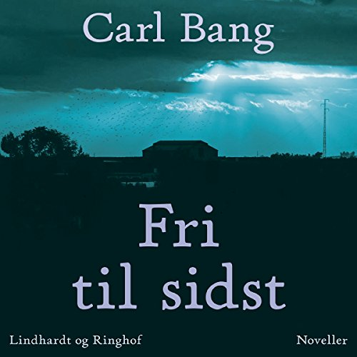 Fri til sidst                   By:                                                                                                                                 Carl Bang                               Narrated by:                                                                                                                                 Fjord Trier Hansen                      Length: 10 hrs and 29 mins     Not rated yet     Overall 0.0