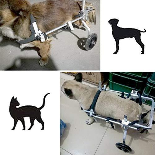 Silla de Ruedas Ajustable para Gato Perro, Carro para ...