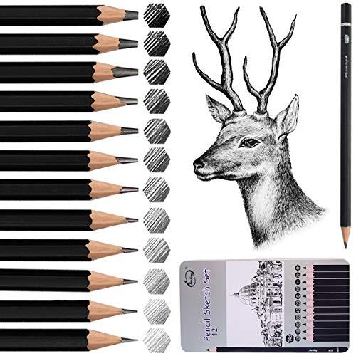 Bleistift Set, Surcotto 12er Zeichenstifte Skizzienstifte Set 14B 12B 10B 8B 6B 4B 2B B HB H 2H 4H Künstlerstift für Kinder Erwachsene Anfänger oder Professionelle, Skizzenstift für Skizze Zeichnen