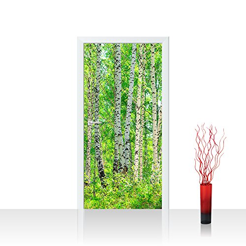 Türtapete selbstklebend 100x211 cm PREMIUM PLUS Tür Fototapete Türposter Türpanel Foto Tapete Bild - BIRCH FOREST - Birkenwald Bäume Wald Sonne Birkenhain Birke Birken Gras Natur Baum - no. 007