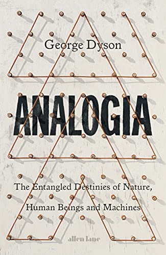 Analogia: The Entangled Destinies of Nature, Human Beings and Machines (English Edition)