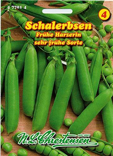 Samen-Paket: Rund Erbse, Früh Harzerin, Früh, Samen, Pisum sativum, Gemüse, Chrestensen, NLC