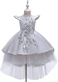 Luxury Children Princess Dress Flower Girl Dress Tutu Wedding Veil Trailing Piano Performance Clothing Girls Dress Princess Dress Catwalk Moderator ryq (Color : Grey, Size : 160cm)