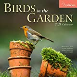 Audubon Birds in the Garden Wall Calendar 2021